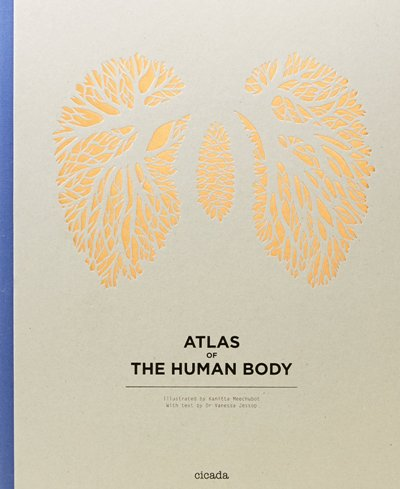 ATLAS OF THE HUMAN BODYen